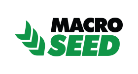 Marco Seed